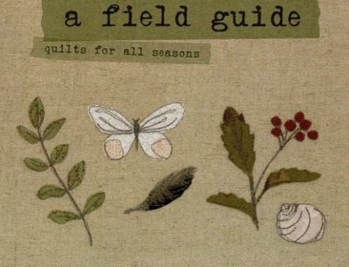 Subscriber Giveaway for October 2021 – A Field Guide by Janet Clare